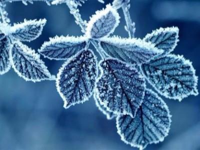冬季气候环境下,写真机烘干器与加热系统使用方法